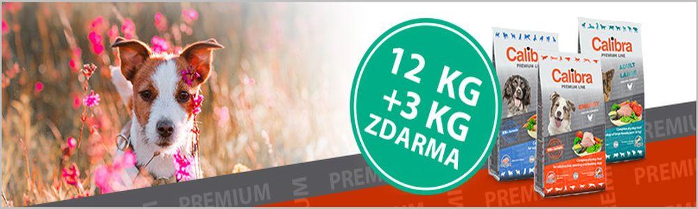 Calibra Premium 12+3