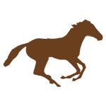 Krmiva pro koně