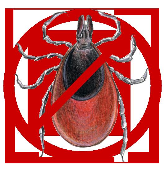Proti parazitům