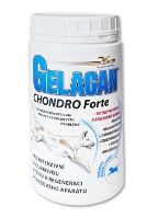 Orling Gelacan Chondro Forte 500g
