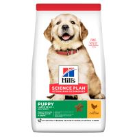 Hills Science Plan Canine Puppy Large Chicken 14kg