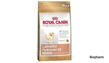Royal Canin BREED Labrador Junior  3kg