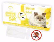 Max Herba-SPOT ON CAT 1x1ml